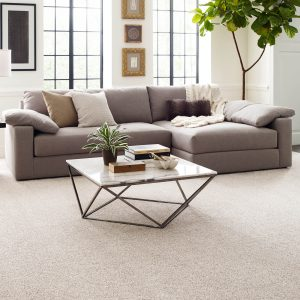 Living room Grey Carpet | Gillenwater Flooring