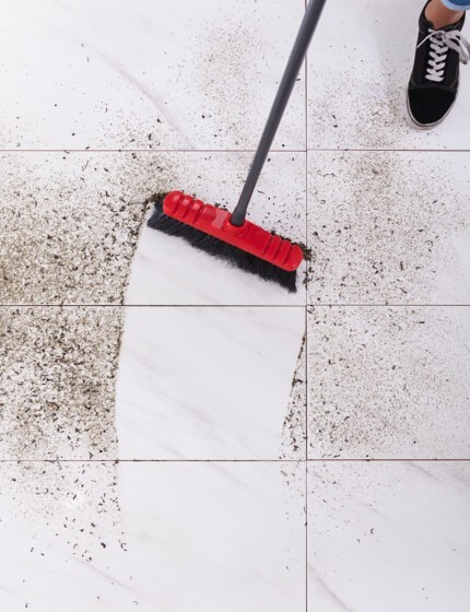 Stain cleaning | Gillenwater Flooring